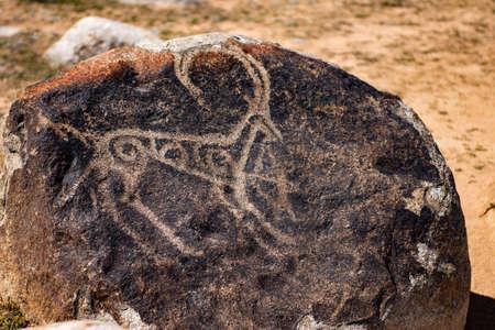 Ancient rock art of a wild animal Stock Photo