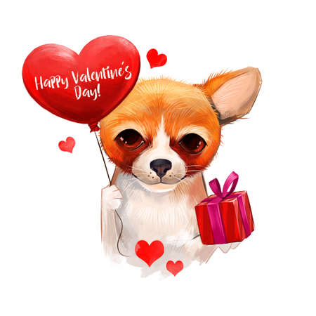 doxie: Dog with balloon in heart shape and gift box. Cute pet wishes you happy valentines day. Digital art illustration. Cute cartoon character lover for invitations posters postcards