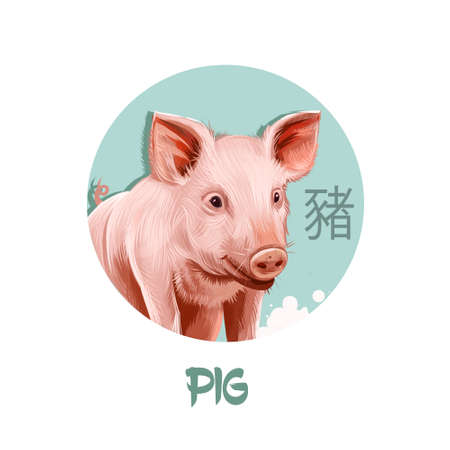 Pig chinese horoscope character isolated on white background. Symbol Of New Year 2019. Pet pink animal in round circle with hieroglyphic sign, digital art realistic illustration, greeting Stockfoto