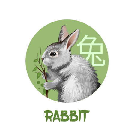 Rabbit chinese horoscope character isolated on white background. Symbol Of New Year 2023. Pet bunny hare animal in circle with hieroglyphic sign, digital art illustration, greeting card Stock Photo