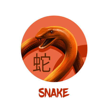 Snake chinese horoscope character isolated on white background. Symbol Of New Year 2025. Reptile animal in round circle with hieroglyphic sign, digital art realistic illustration, greeting card