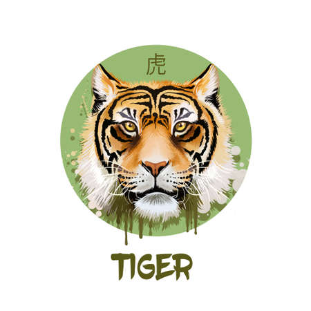 Tiger horoscope character isolated on white background. Symbol Of New Year 2022. Chinese calendar animal in circle with hieroglyphic sign, digital art realistic illustration, greeting card Stock Photo