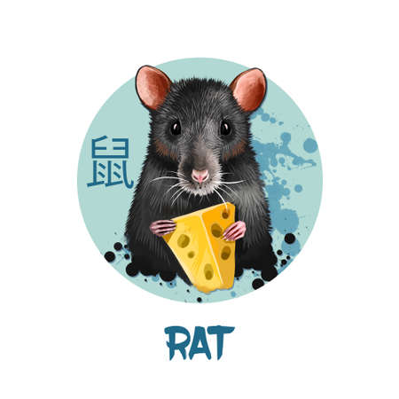 Rat chinese horoscope character isolated on white background. Symbol Of New Year 2020. Pet animal in round circle with hieroglyphic sign, digital art realistic illustration, greeting card