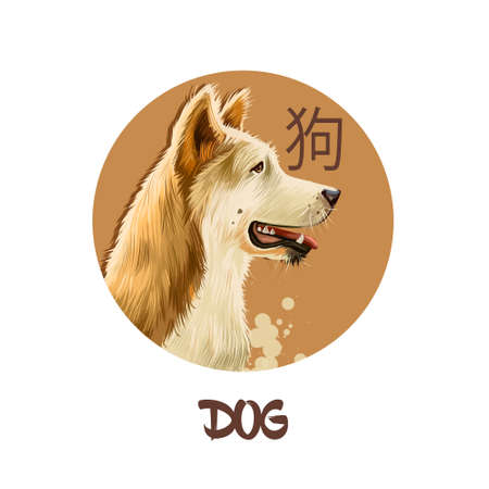 Dog chinese horoscope character isolated on white background. Symbol Of New Year 2018. Pet puppy animal in round circle with hieroglyphic sign, digital art realistic illustration, greeting card Stockfoto