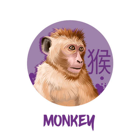 Monkey chinese horoscope character isolated on white background. Symbol Of New Year 2028. Funny animal in round circle with hieroglyphic sign, digital art realistic illustration, greeting card Stock Photo