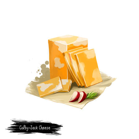 Queijo de Colby-Jack com a ilustração digital da arte do rabanete isolada no fundo branco. Produtos lácteos frescos, alimentos orgânicos saudáveis ??em design realista. Delicioso aperitivo, lanche italiana refeição italiana Foto de archivo - 83307205
