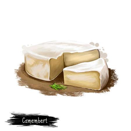 カマンベール チーズ添えローズマリー デジタル アート イラスト白背景に分離されました。新鮮な乳製品、現実的なデザインで健康的な有機食品。