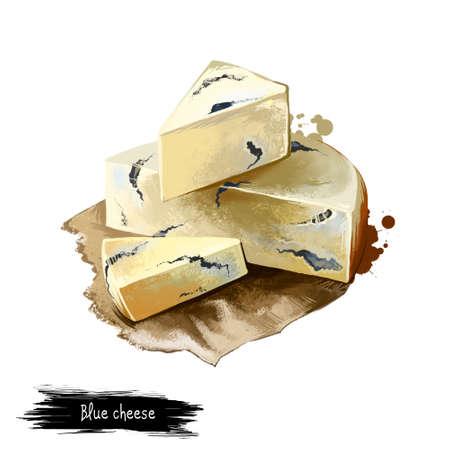 ブルーチーズ紙デジタル アート イラスト白い背景で隔離の作品。新鮮な乳製品、現実的なデザインで健康的な有機食品。おいしい前菜、グルメ ス