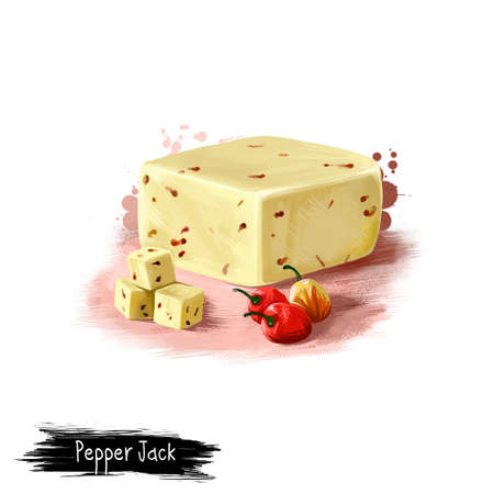 Pepper Jack cheese with red chilli digital art illustration isolated on white background. Fresh dairy product, healthy organic food in realistic design. Delicious appetizer, gourmet snack italian meal