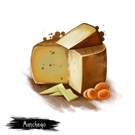 Manchego cheese with dried fruits digital art illustration isolated on white background. Fresh dairy product, healthy organic food in realistic design. Delicious appetizer, gourmet snack italian meal
