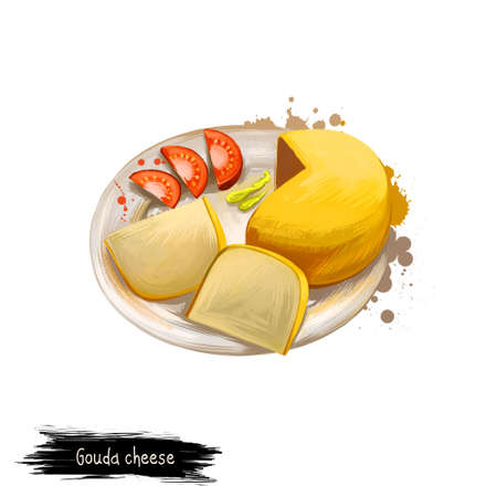 Gouda cheese on plate with tomatoes digital art illustration isolated on white. Fresh dairy product, healthy organic food in realistic design. Delicious appetizer, gourmet snack italian meal