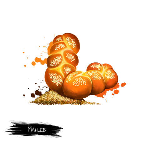 Mahleb or Mahlab is an aromatic spice made from the seeds of a species of cherry isolated on white background. Fresh tasty roll bun with mahleb. Bakery. Baked bun. Digital art illustration Banco de Imagens