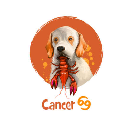 Digital art illustration of astrological sign Cancer. 2018 year of dog. Fourth of twelve zodiac signs. Horoscope water element. Logo sign with crab. Graphic design clipart for web, print. Add any text