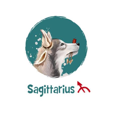 Digital art illustration of astrological sign Sagittarius. 2018 year of dog. Ninth of twelve zodiac signs. Horoscope fire element. Arrows logo sign. Graphic design clip art for web, print. Add text Stock fotó