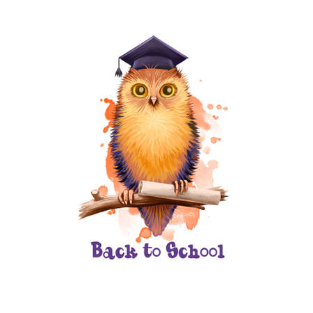 Back to school digital art illustration. Beginning of studying year event. Hand drawn wise owl sitting on branch with paper scroll isolated on white background. Graphic clip art design concept drawing