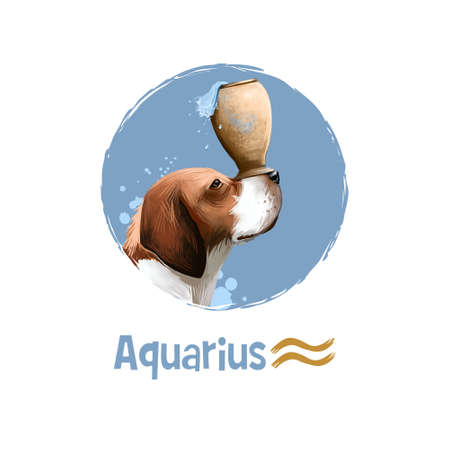 Digital art illustration of astrological sign Aquarius. 2018 year of dog. Eleventh of twelve signs in zodiac. Horoscope air element. Logo sign with water jug. Graphic design for web, print. Add text