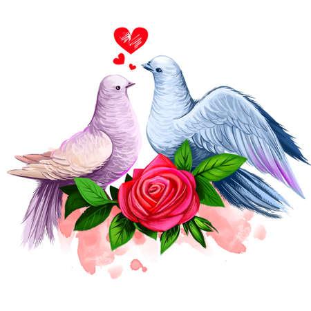 2鳩のキスのデジタルイラスト。平和鳩のカップル。赤いバラとペンキの飛沫と美しいデザイン。Web と印刷のためのハッピーバレンタインデーグリー
