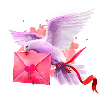 Digital illustration of pigeon bringing love letter. Flying post pigeon. Beautiful design with pink paint splashes. Happy Valentines Day greeting card design template for web and print. Add any text