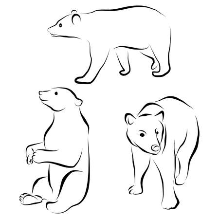 vector set of bear silhouettes isolated on white background. Wild grizzly contour, animal in different poses. Hand drawn wild mammal. Graphic illustration clip art. Flat design