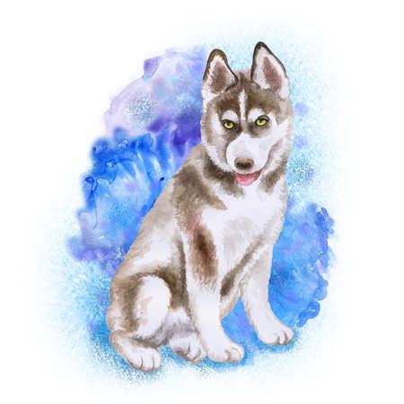 青の背景に分離されたハスキー子犬の水彩クローズ アップ肖像画。面白い犬示す舌。手描きの甘いホーム ペット。人気のある大型そりタイプ犬。グ 写真素材