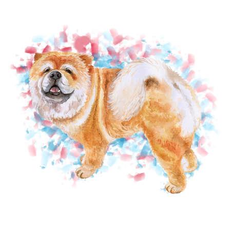 カラフルな背景に分離チャウチャウ犬のポートレート、水彩のクローズ アップ。面白い犬示す舌。手描きの甘いホーム ペット。人気のある大型犬の
