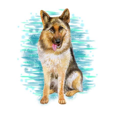 Aquarel close-up portret van grote Duitse herder RAS hond geïsoleerd op blauwe abstracte achtergrond. Grote langharige werkhond uit Duitsland. Hand getekend zoet huis huisdier. Wenskaart ontwerp. Stockfoto