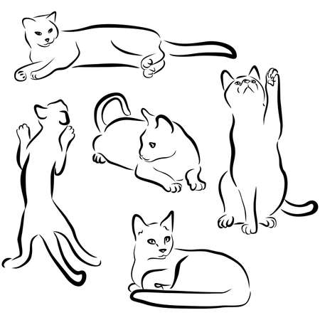 Felines drawn in different poses: playing, sitting, lying. Sweet home pet.