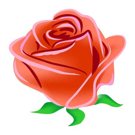 白い背景に孤立した赤いバラの手描きデジタルイラスト。夏の花。グラフィック要素。クリップアートのイラスト。誕生日、結婚式、バレンタイン 写真素材