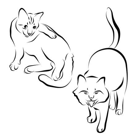 Felines drawn in different poses: playing, walking, lying. Ilustração