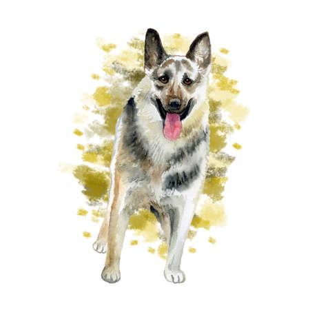Aquarel close-up portret van grote Oost-Europese herder RAS hond geïsoleerd op abstracte achtergrond. Grote langharige werkhond. Hand getekend zoet huis huisdier. Begroeting verjaardagskaart ontwerp. Clip art