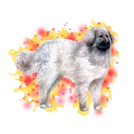 抽象的な背景に分離された大きなモスクワン ・犬のポートレート、水彩のクローズ アップ。大規模な長髪作業警備犬。手描きの強力なホーム ペッ