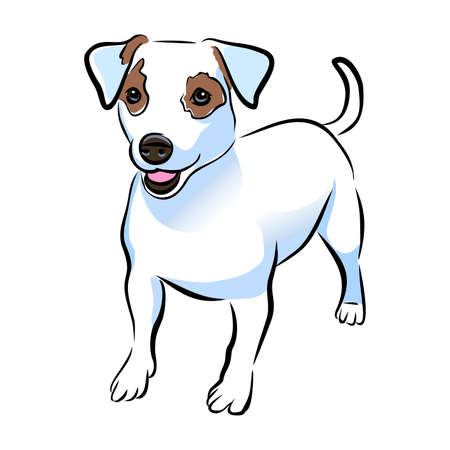 A Vector closeup portrait of cute Jack russel terrier breed puppy isolated on white background. Short Hair small-sized little terrier dog. Hand drawn sweet home pet. Greeting card design. Clip art Ilustração