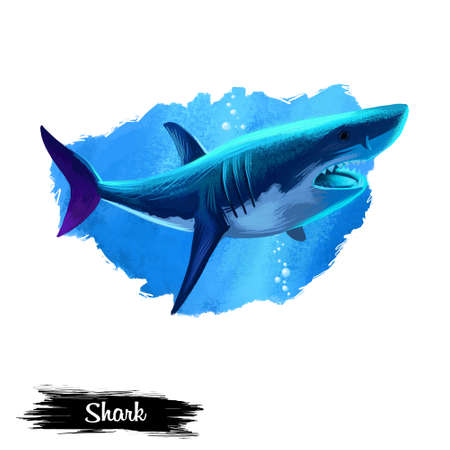 Shark in water realistic design isolated on white background digital art illustration. Underwater dangerous fish, marine predator with large teeth, giant undersea animal, wildlife creature Imagens