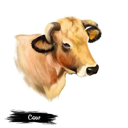 흰색 배경에 디지털 아트 그림 격리 암소 머리. 우유를 가져 오는 국내 갈색 젊은 동물, 농장 척추 동물 포유류, 쇠고기의 얼굴, 중국 별점, 농업 개념의