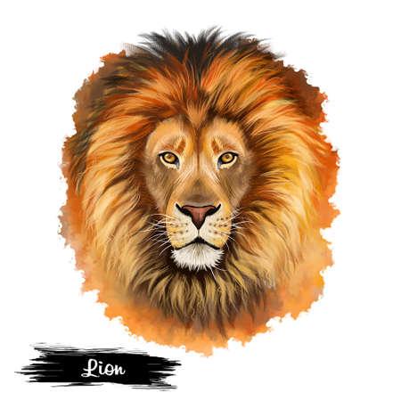 흰색 배경에 디지털 아트 그림 격리 된 사자 머리. 야생 동물 위험한 동물, 레오 점성술 기호, 짐승 얼굴, 강한 아프리카 고양이, 귀여운 문신 디자인 엠