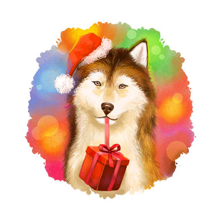 Digital art illustration of cute dog in red Santas hat holding gift box in mouth. Merry Christmas and Happy New Year greeting card design. 2018 year of dog. Graphic clip art design for web, print