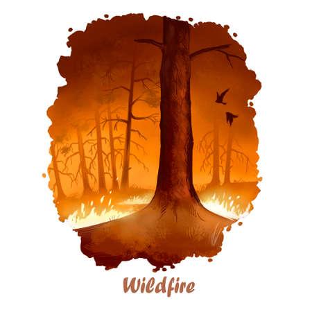 Wildfire digitale kunstillustratie van natuurramp. Bosbrand, brandende bomen, vernietiging van hout, milieu probleem luchtvervuiling ontbossing concept. Vlam beschadigt alles