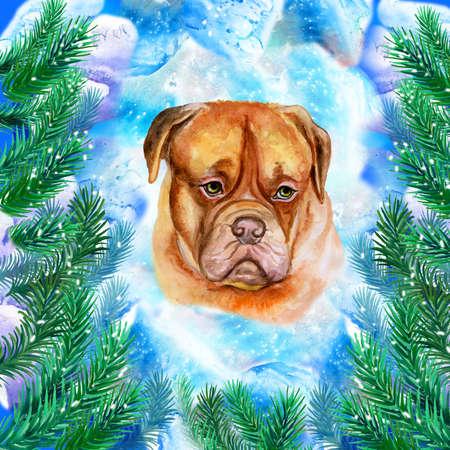 보르도 마스티프 신년 및 전나무 나뭇 가지와 크리스마스 인사말 카드 디자인의 상징. 눈이 배경에 고립 된 귀여운 강아지 수채화 그림 엽서 겨울 휴가