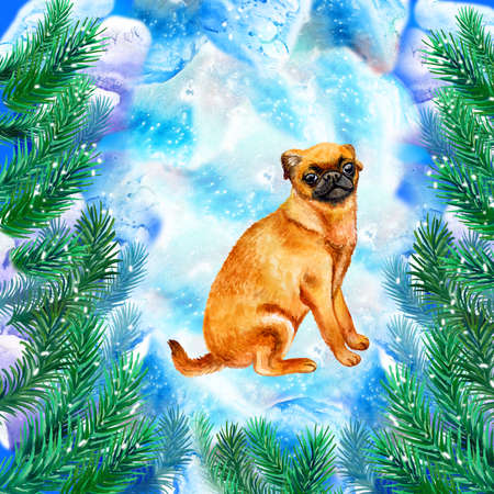 Small brabant griffon symbol of New Year and Christmas greeting card design with fir tree branches. Cute dog watercolor illustration isolated on snowy background, postcard in winter holidays concept
