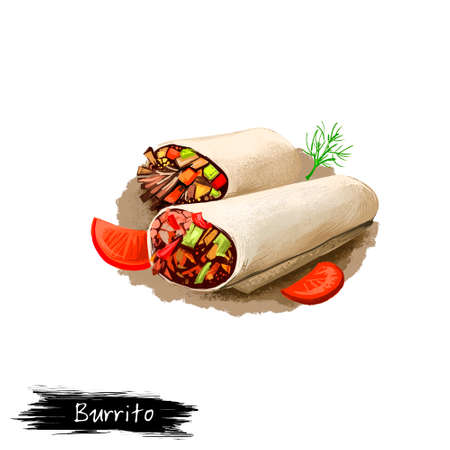 Burrito with vegetables rolled in pita bread, kebab isolated on white background. Street food, take-away, take-out. Fast food hand drawn digital illustration. Graphic clip art design for web, print
