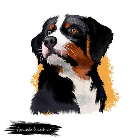 Appenzeller Sennenhund dog digital art illustration isolated on white. Medium-size breed of dog, regional breeds of Sennenhund-type dogs. Heavy, molosser-like build and a distinctive tricolour coat.