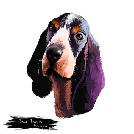 Basset Bleu de Gascogne or Blue Gascony Basset long-backed, short legged hound type dog digital art illustration isolated on white background. Cute pet hand drawn portrait. Graphic clip art design Stock Photo