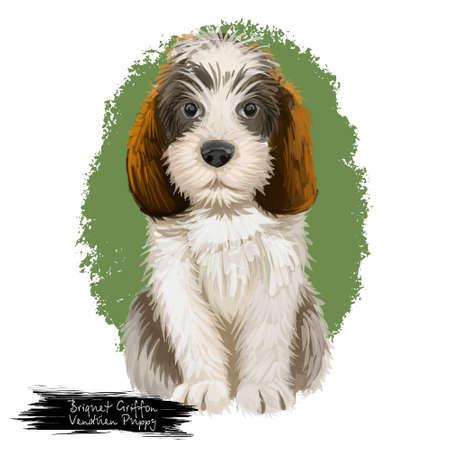 Briquet Griffon Vendeen cachorro y texto. Raza de perro realista de origen francés pedigrí animales domésticos de pura raza. Mascota de caza aislada en la ilustración de arte digital de fondo blanco Foto de archivo