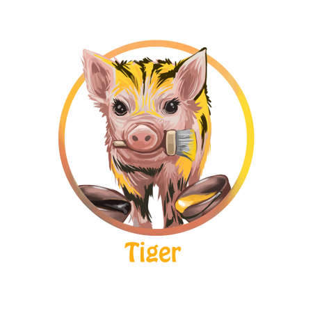 Tiger poster with Chinese zodiac text name digital art. Isolated poster of pig resembling wild animal holding brush in mouth, paint in canisters and containers. Horoscope and oriental astrology