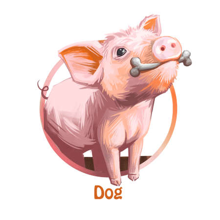 Chinese zodiac sign of pet holding bone resembling canine pet digital art. Piglet similar to puppy, culture and beliefs of China country. Poster with astrology year name,  sign