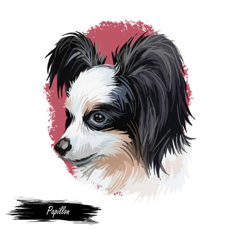 Papillon continental toy spaniel breed portrait watercolor, digital art. Isolated muzzle of lap pet, domestic animal originated from France. French canine of small size, pet with wide ears poster