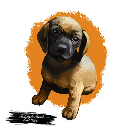 Montenegrian mountain hound dog type, puppy breed digital art