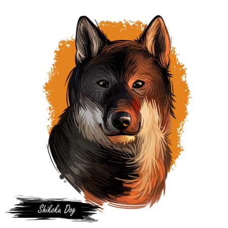 Shikoku dog originated from Japan, Japanese dog digital art. Hand drawn animalistic watercolor portrait, closeup of pet muzzle