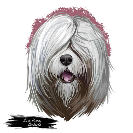 South Russian Ovcharka breed with opened mouth digital art. Watercolor portrait of pet originated from Russia, domestic animal with long fur