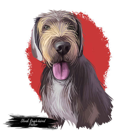 Slovak rough haired pointer sticking out tongue digital art. Pet hand drawn watercolor portrait closeup, doggish muzzle with fur, furry animal Stok Fotoğraf
